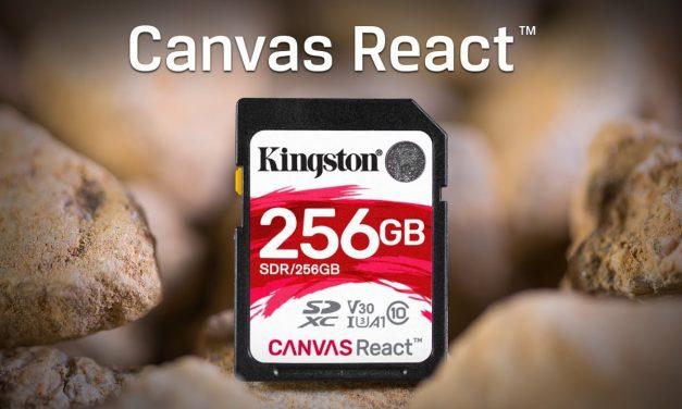 Kingston Canvas React