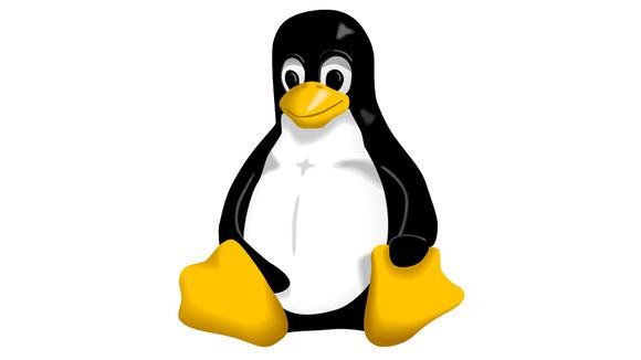 Descubierta (y corregida) una vulnerabilidad grave en el kernel Linux